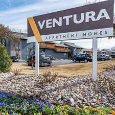 Rental info for The Ventura in the Arlington area