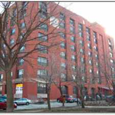 Rental info for 2100 S. Marshall Lofts in the Little Village area
