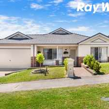 Rental info for STUNNING SILVER GUM! in the Pakenham area