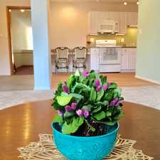 Rental info for Spring Garden Apartments in the Cleveland area