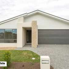 Rental info for Perfectly designed near new home / Pet friendly in the One Mile area