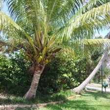 Rental info for One Bedroom In North Palm Beach in the Riviera Beach area