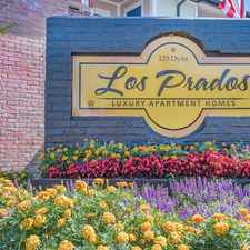 Rental info for Los Prados in the Greater Greenspoint area