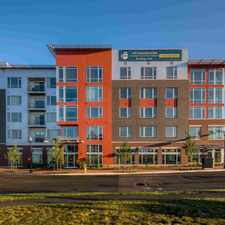 Rental info for The Frasier in the Potomac Yard - Potomac Greens area