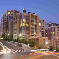 Rental info for The Palatine Apartments in the Arlington area