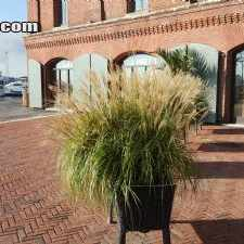 Rental info for $1500 1 bedroom Apartment in Baltimore City Baltimore South in the Baltimore area
