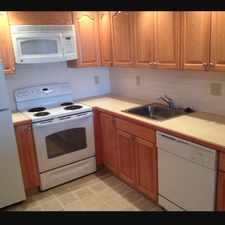 Rental info for Palmer St in the 02474 area