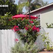 Rental info for $3750 2 bedroom Townhouse in West Los Angeles Santa Monica in the Los Angeles area