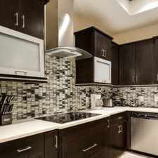 Rental info for Gorgeous Sleek Contemporary Beauty With Pool! in the McAllen area