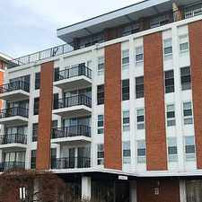 Rental info for Rarely Available Large 1 Bed/1 Bath In The Impe... in the Langston Hughes area
