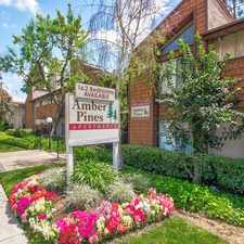 Rental info for Amber Pines in the Upland area