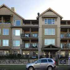 Rental info for 250 Salter Street #206 in the New Westminster area