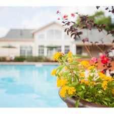Rental info for Lodge at Merrilltown Senior