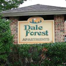 Rental info for Dale Forest