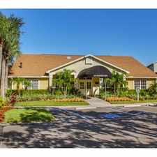 Rental info for Providence at Palm Harbor in the Palm Harbor area