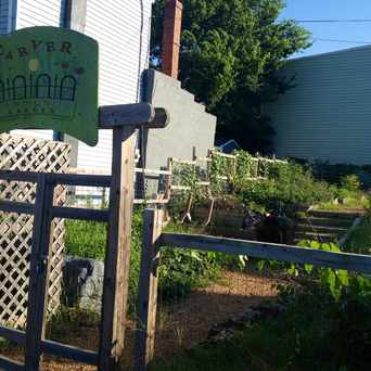 Photo of Carver Community Garden in Carver, Richmond