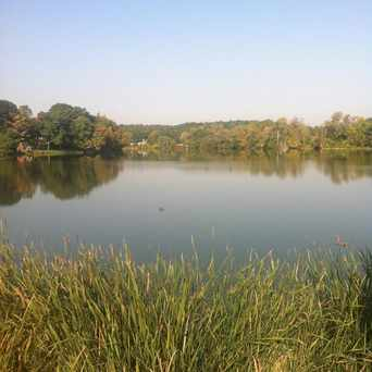 Photo of Ell Pond in Melrose