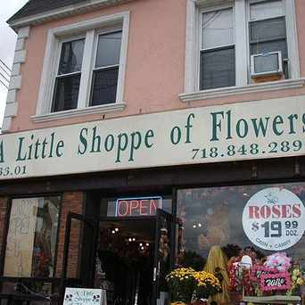 Photo of Little Shoppe of Flowers in South Ozone Park, New York