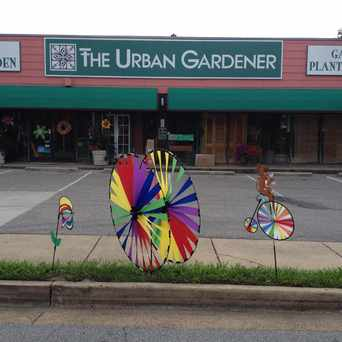 Photo of Urban Gardener in Memphis