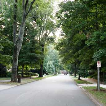 Photo of Myers Park Tree Lined Street in Myers Park, Charlotte