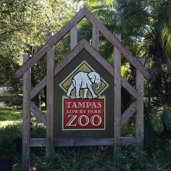 Photo of Lowry Park Zoo in Lowry Park Central, Tampa
