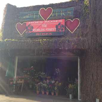 Photo of Moe's Flowers in Mid-City West, Los Angeles