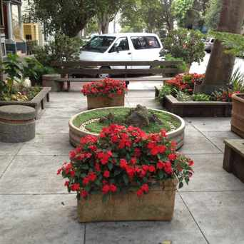 Photo of Parklet in Duboce Triangle, San Francisco
