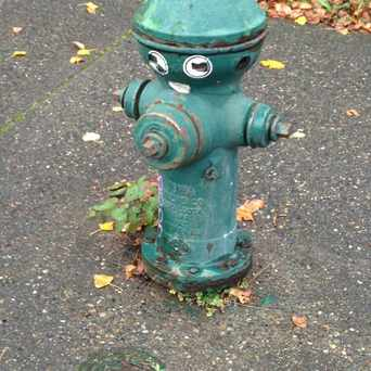 Photo of Fire Hydrant Face in North College Park, Seattle