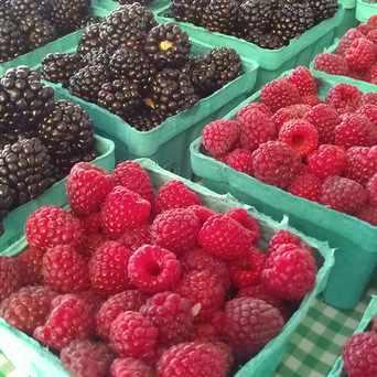 Photo of Lloyd Farmers' Market in Lloyd District, Portland