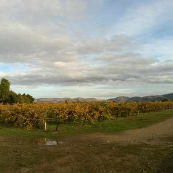 Photo of Retzlaff Vineyards in Livermore