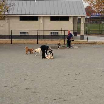 Photo of Potomac Yard Dog Park in Del Ray, Alexandria