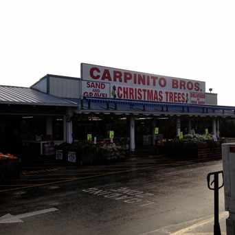 Photo of Carpinito Brothers in Kent