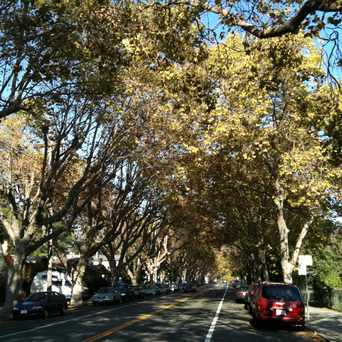 Photo of Hopkins Street, Berkeley, CA in Berkeley