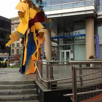Photo of Zaytinya in Downtown-Penn Quarter-Chinatown, Washington D.C.