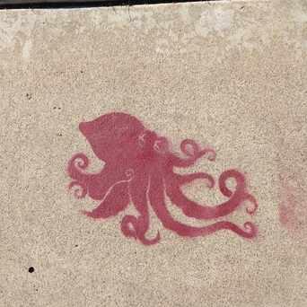 Photo of Stencil Sidewalk in North Park, San Diego