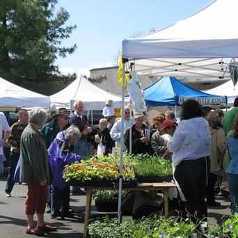 Photo of West Seattle Farmers Market in Genesee, Seattle