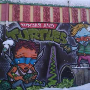 Photo of Ninjas And Turtles Mural in Whittier, Minneapolis