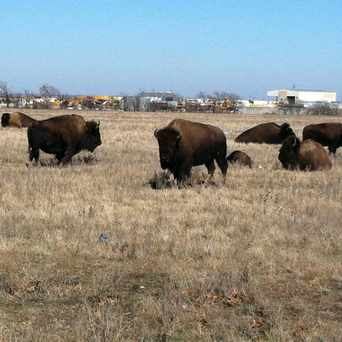 Photo of Buffalo field in Fort Worth