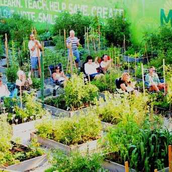 Photo of Montrose Green Community Garden in North Center, Chicago
