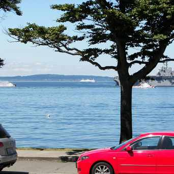 Photo of Magpie On Alki, Seattle WA in Alki, Seattle