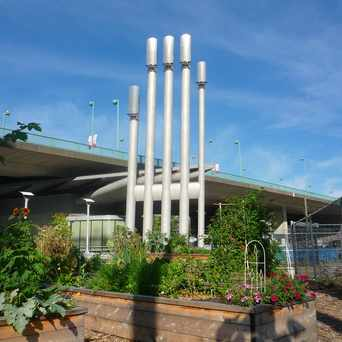 Photo of John McBride Community Garden in Mount Pleasant, Vancouver