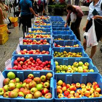 Photo of Daley Plaza Farmers Market in The Loop, Chicago