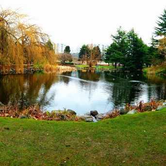 Photo of Minoru Park Lakes in Richmond