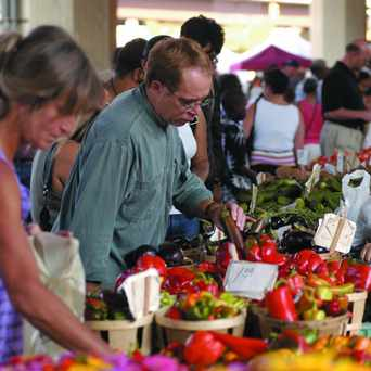 Photo of Baltimore Farmers Market & Bazaar in Baltimore