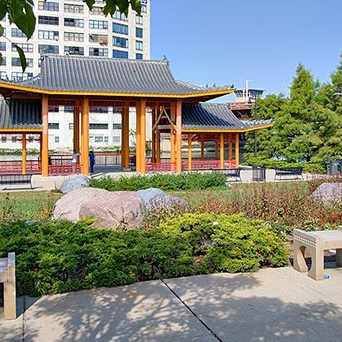 Photo of Ping Tom Memorial Park in South Loop, Chicago