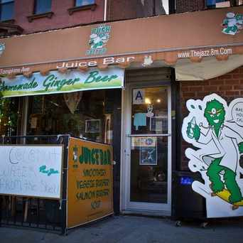 Photo of The Bush Doctor Juice Bar in Bedford-Stuyvesant, New York