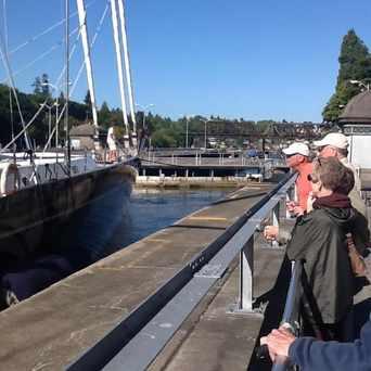 Photo of Ballard Locks Fish Ladder in Ballard, Seattle