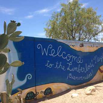 Photo of Limberlost Neighborhood Mural in Tucson