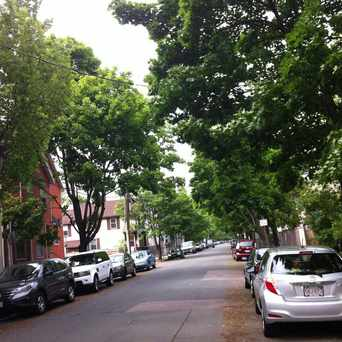 Photo of Hampshire St @ Webster Ave in Wellington - Harrington, Cambridge