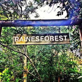 Photo of Rainesforest Massage & Day Spa Indooroopilly Brisbane in Brisbane